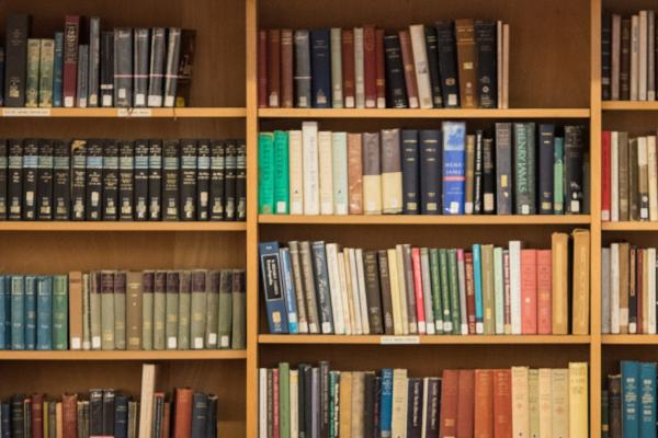 Faculty Library Shelves