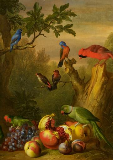 Painting of brightly coloured birds and fruit